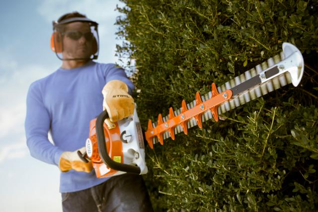 Where to find HEDGE TRIMMERS 40 in North Palm Beach